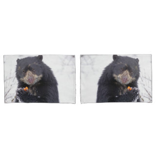 Spectacled bear pillowcase