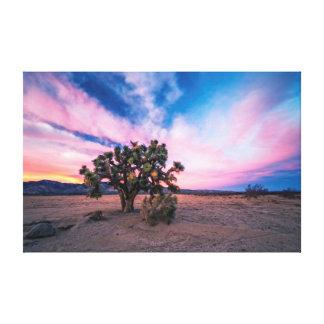 Spectacular Desert Sunset in Mojave Canvas Print