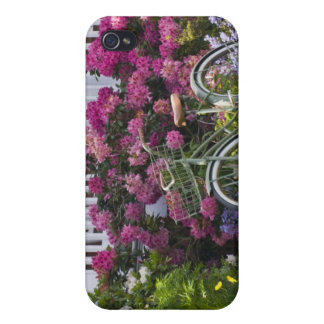Spectacular spring bloom, whimsical antique iPhone 4/4S covers