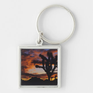 Spectacular Sunrise at Joshua Tree National Silver-Colored Square Keychain