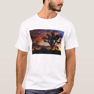 Spectacular Sunrise at Joshua Tree National T-Shirt