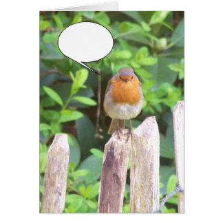 speech bubble comic robin card
