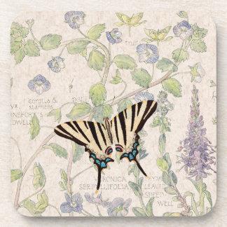 Speedwell Flowers Wildlife Butterfly Coaster