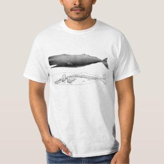 sperm whale T-Shirt