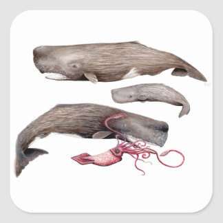 Sperm whale trio square sticker