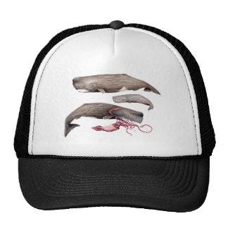 Sperm whale trio trucker hat