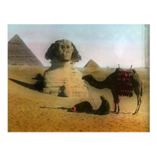 Sphnix and Pyramid Postcard