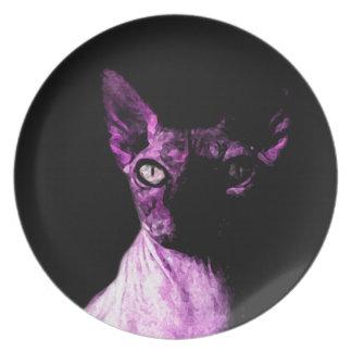 Sphynx cat dinner plates