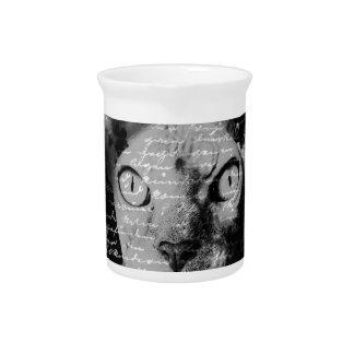 Sphynx cat drink pitcher