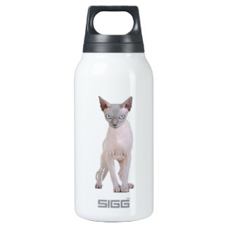 Sphynx cat insulated water bottle