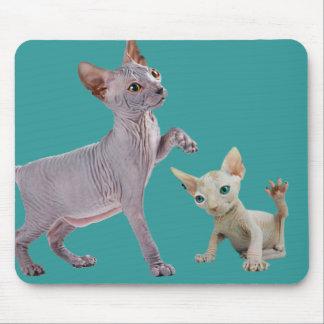 Sphynx Cat Mousepads