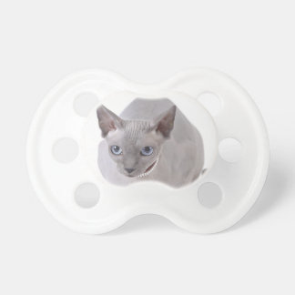 Sphynx cat pacifier