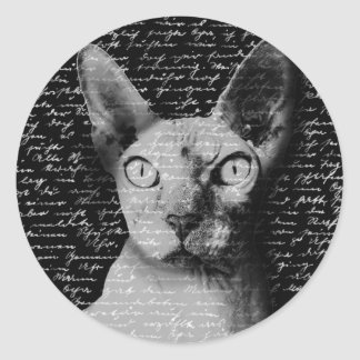 Sphynx cat round sticker