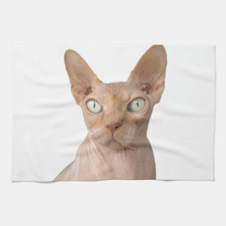 sphynx hand towels