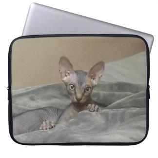 Sphynx Kitten Laptop Sleeve
