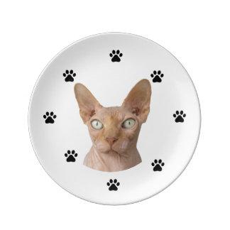 Sphynx Plate