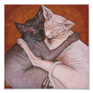 Sphynx Sphinx Cat Painting Art Poster