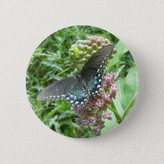 Spicebush Female Button