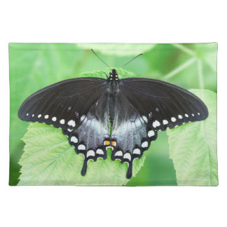 Spicebush Swallowtail Butterfly Cloth Placemat