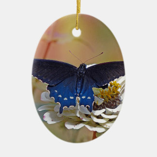 Spicebush Swallowtail Ceramic Oval Ornament