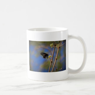 Spicebush Swallowtail I Coffee Mug