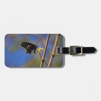 Spicebush Swallowtail I Luggage Tag