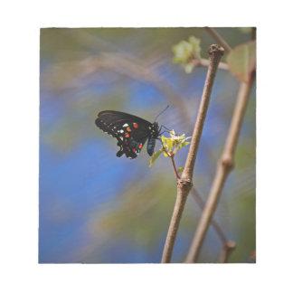 Spicebush Swallowtail I Notepad