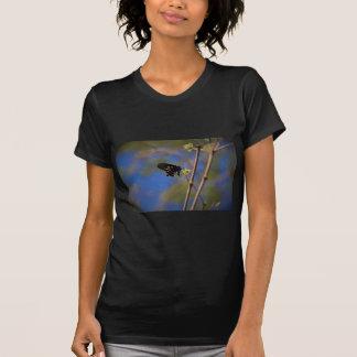 Spicebush Swallowtail I T-Shirt