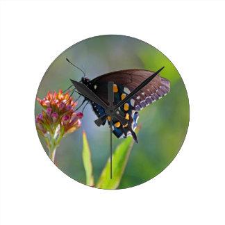 Spicebush Swallowtail II Round Clock