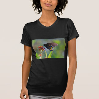 Spicebush Swallowtail II T-Shirt