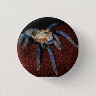 Spider badge 1 inch round button