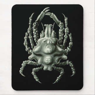 Spider Crab Mouse Pad