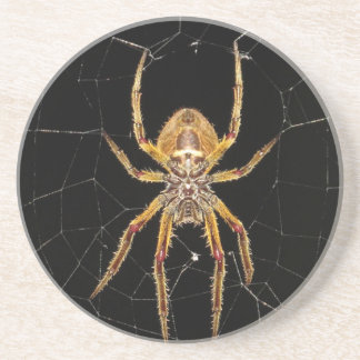 Spider design coaster