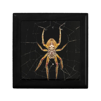 Spider design gift box