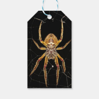 Spider design gift tags
