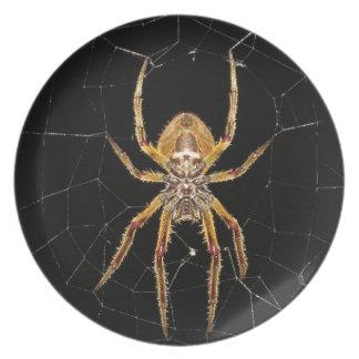 Spider design plate