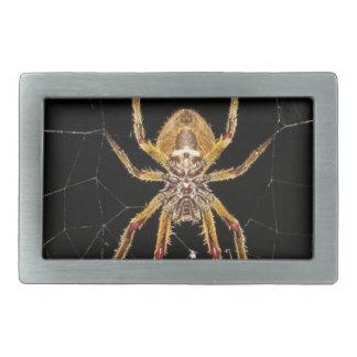 Spider design rectangular belt buckles