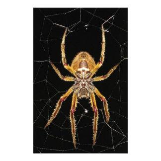 Spider design stationery
