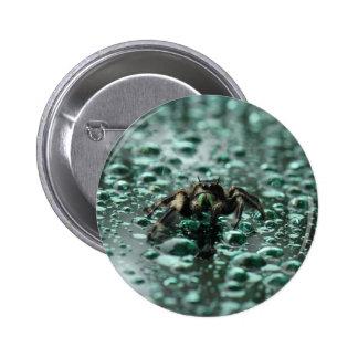 Spider in the Rain 2 Inch Round Button
