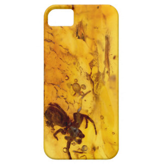 Spider inside baltic amber stone iPhone 5 cases