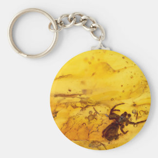 Spider inside baltic amber stone keychain
