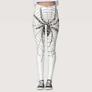 spider leggings female rider style