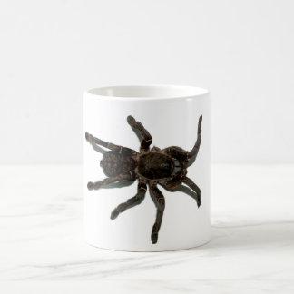 Spider lovers coffee mug