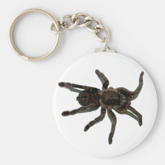 Spider lovers keychain