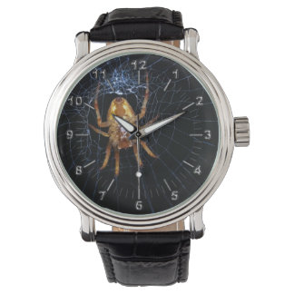 Spider lovers watches