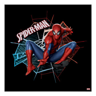 Spider-Man dans le graphique rompu de Web