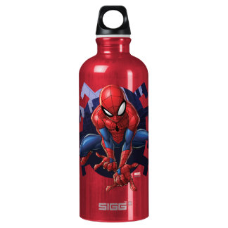 Spider-Man Leaping Out Of Spider Graphic Water Bottle