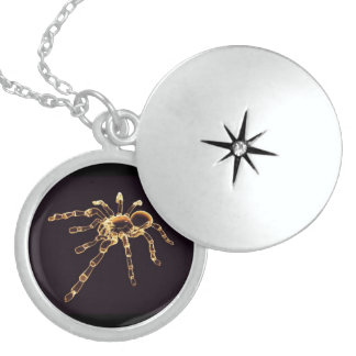 Spider, Medium Sterling Silver Round Locket