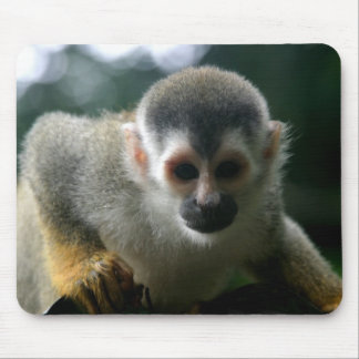 Spider Monkey Mouse Pad