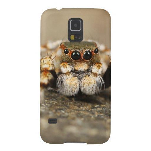 Spider Nature Animals  Wild  insects Samsung Galaxy Nexus Case